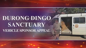 Durong Dingo Sanctuary Vehicle Appeal